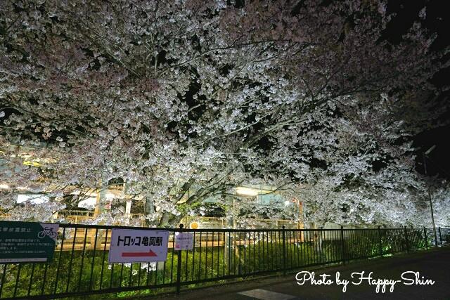 f:id:happy-shin-kyoto:20180402235301j:image