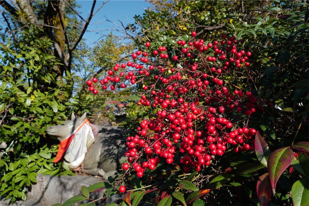 f:id:happy-shin-kyoto:20200112185509j:image