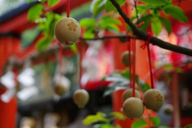 f:id:happy-shin-kyoto:20210725232440j:image