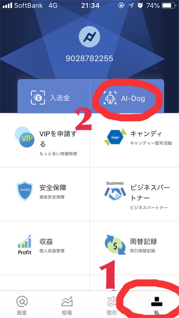 f:id:happy-yuchan:20190219074830j:image