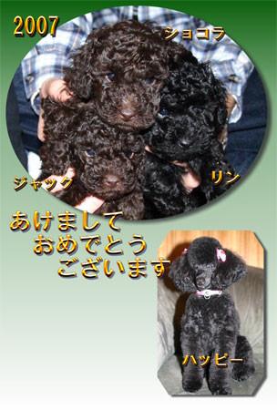 f:id:happybirth:20070124002255j:image