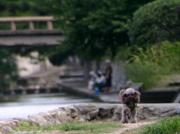 f:id:happybirth:20090920084853j:image