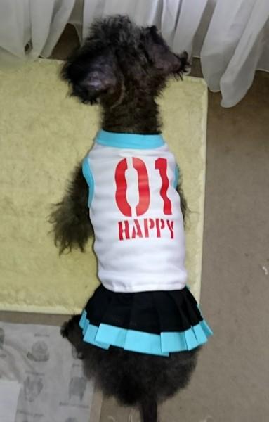 f:id:happybirth:20160919153000j:image