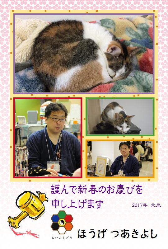 f:id:happycome_hogetsu:20170101024644j:plain