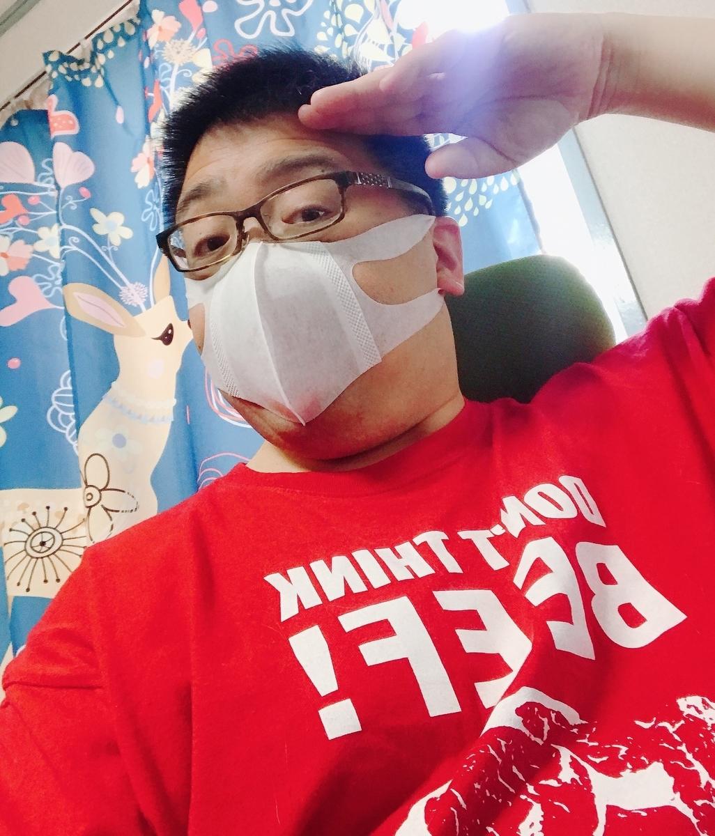 f:id:happycome_hogetsu:20200405022706j:plain