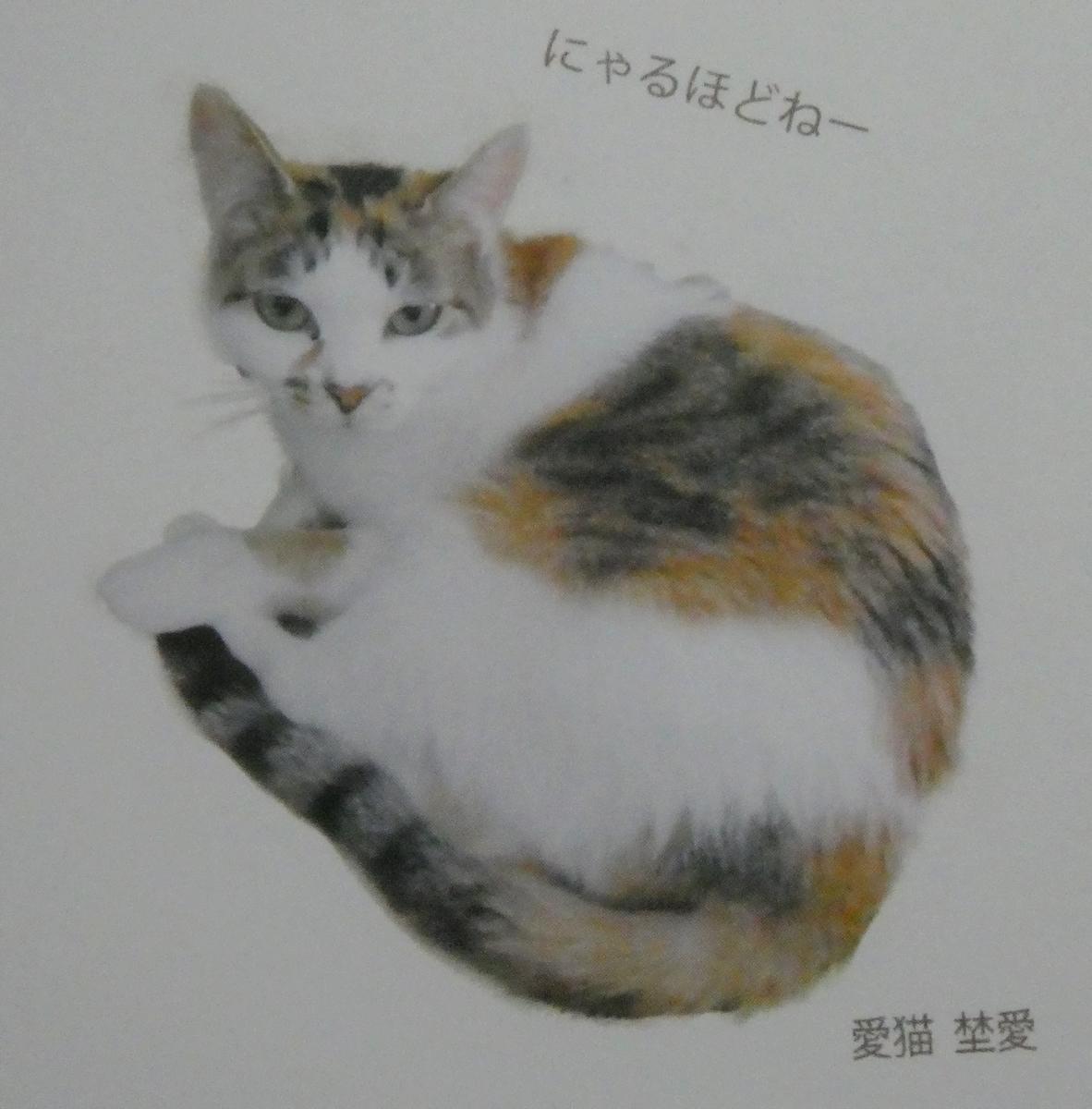 f:id:happycome_hogetsu:20200606015025j:plain