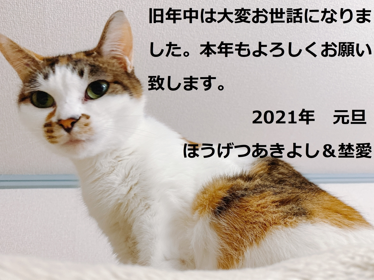 f:id:happycome_hogetsu:20210101145808j:plain