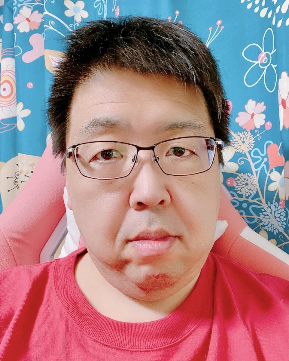 f:id:happycome_hogetsu:20210509151347j:plain