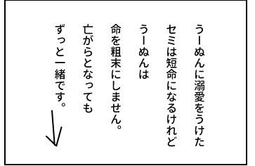 20150825_13.jpg