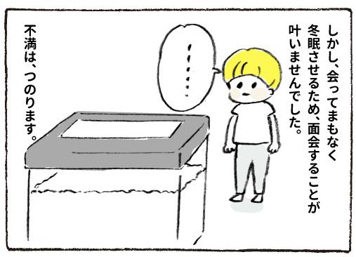 f:id:happyhappysan:20161231221636j:plain