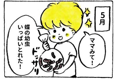 f:id:happyhappysan:20170929110130j:plain