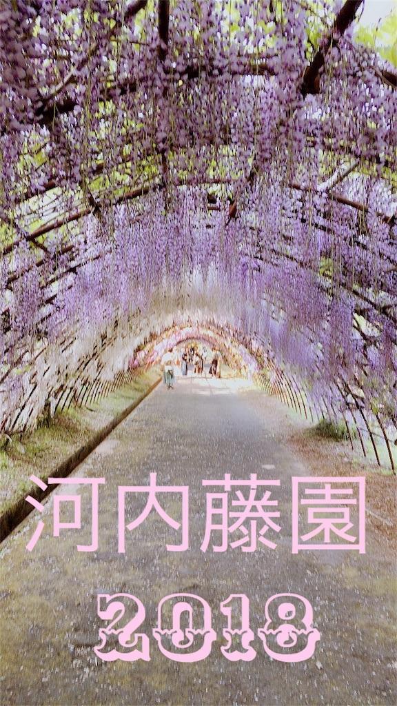 f:id:happyhappysatoru:20180422185838j:image