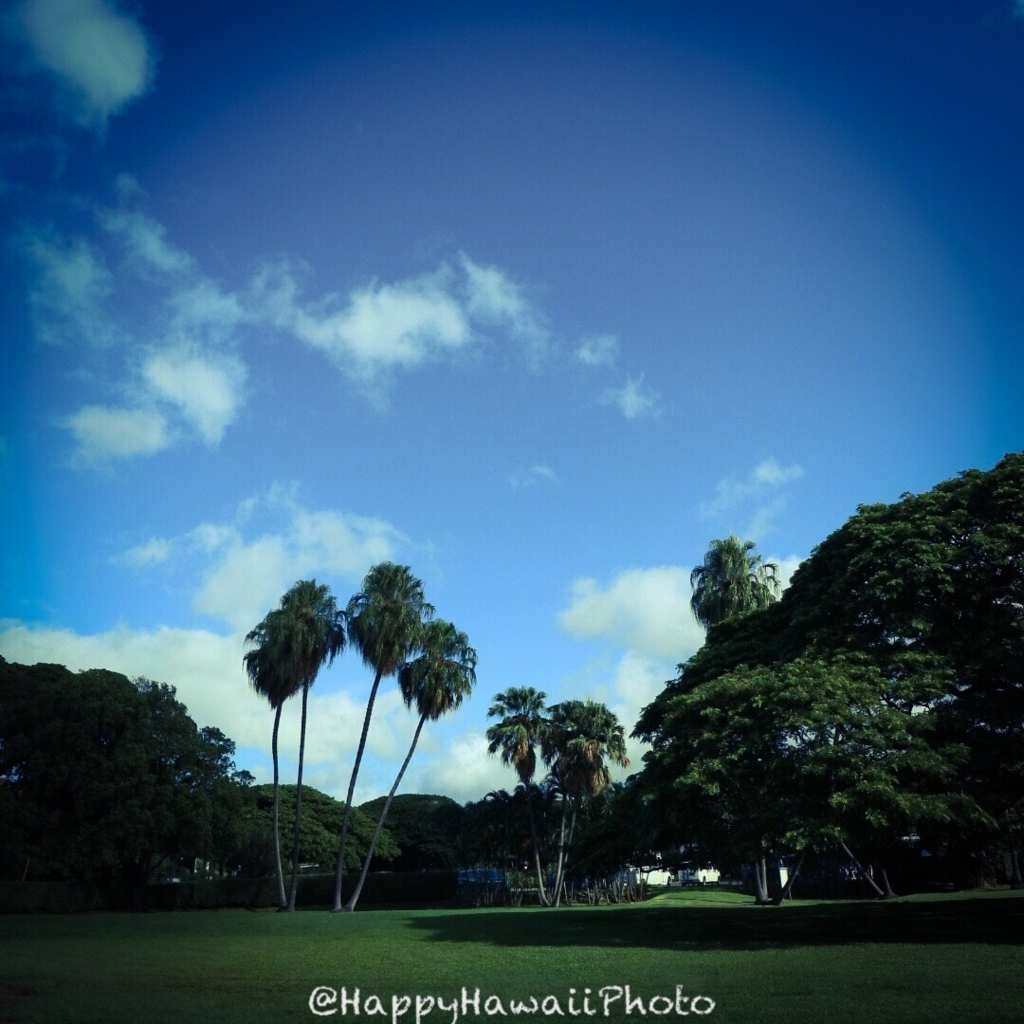 f:id:happyhawaiiphoto:20171208233321j:plain