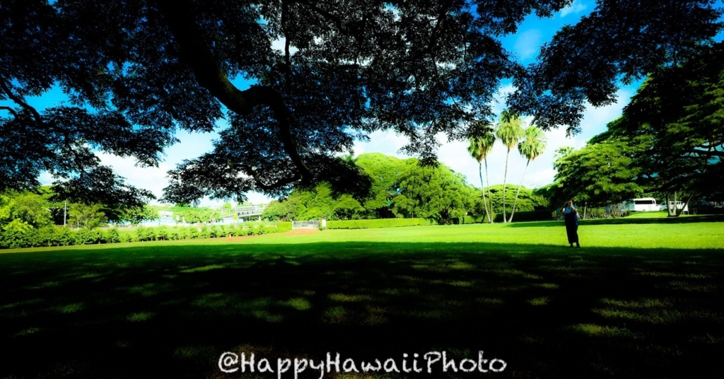 f:id:happyhawaiiphoto:20180103181626j:plain