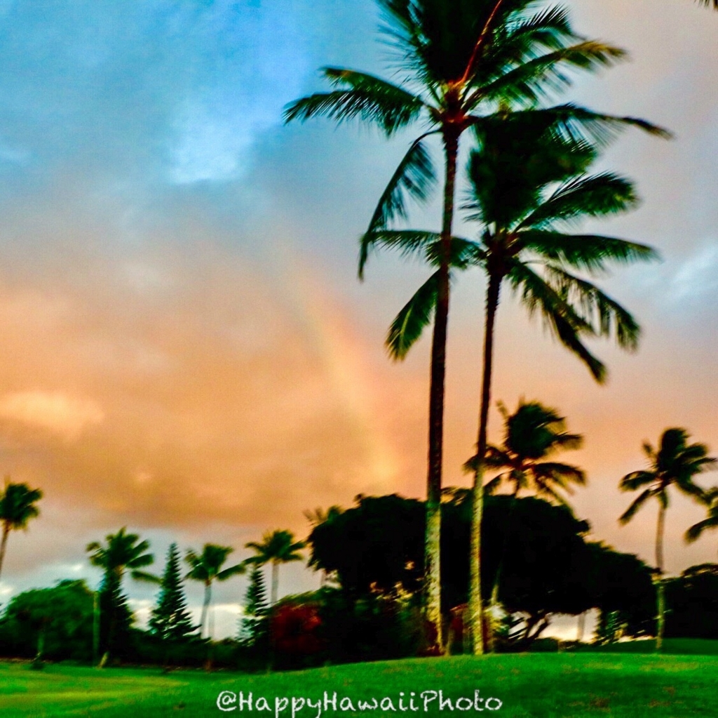 f:id:happyhawaiiphoto:20180206000104j:plain