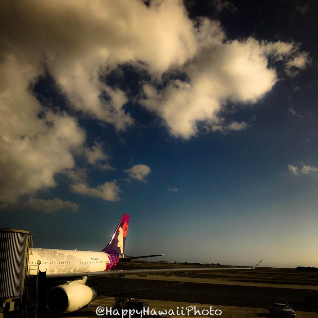 f:id:happyhawaiiphoto:20180223235020j:plain