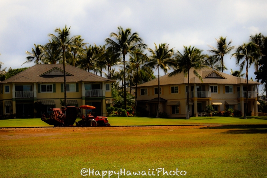 f:id:happyhawaiiphoto:20180315235654j:plain