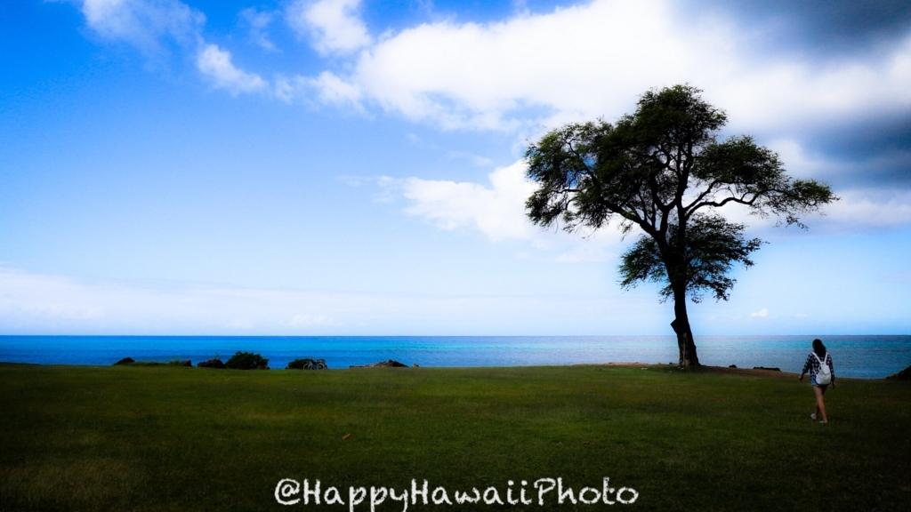f:id:happyhawaiiphoto:20180330235235j:plain