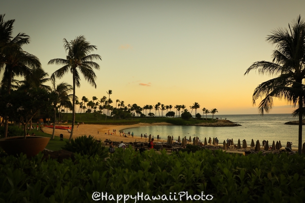 f:id:happyhawaiiphoto:20181123231121j:plain