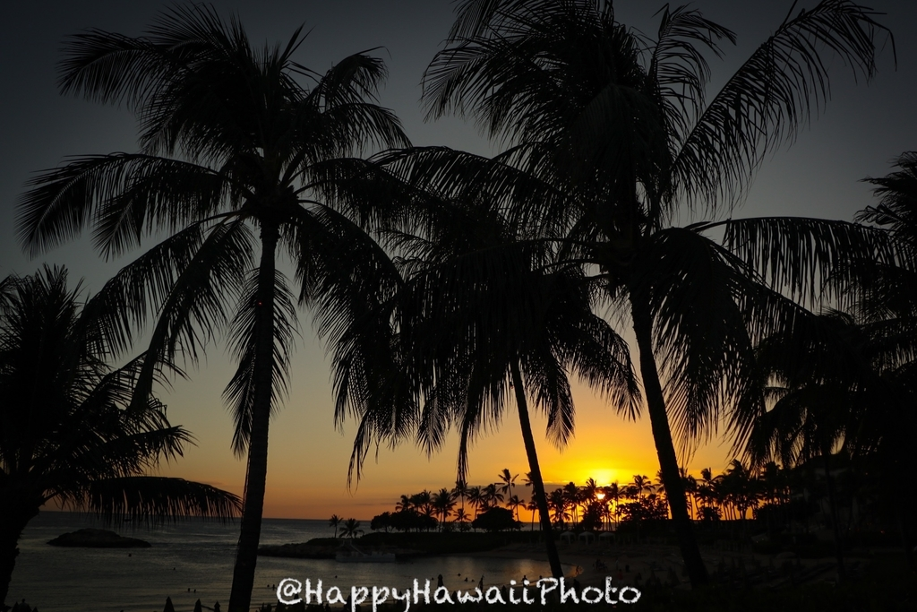 f:id:happyhawaiiphoto:20181123231846j:plain