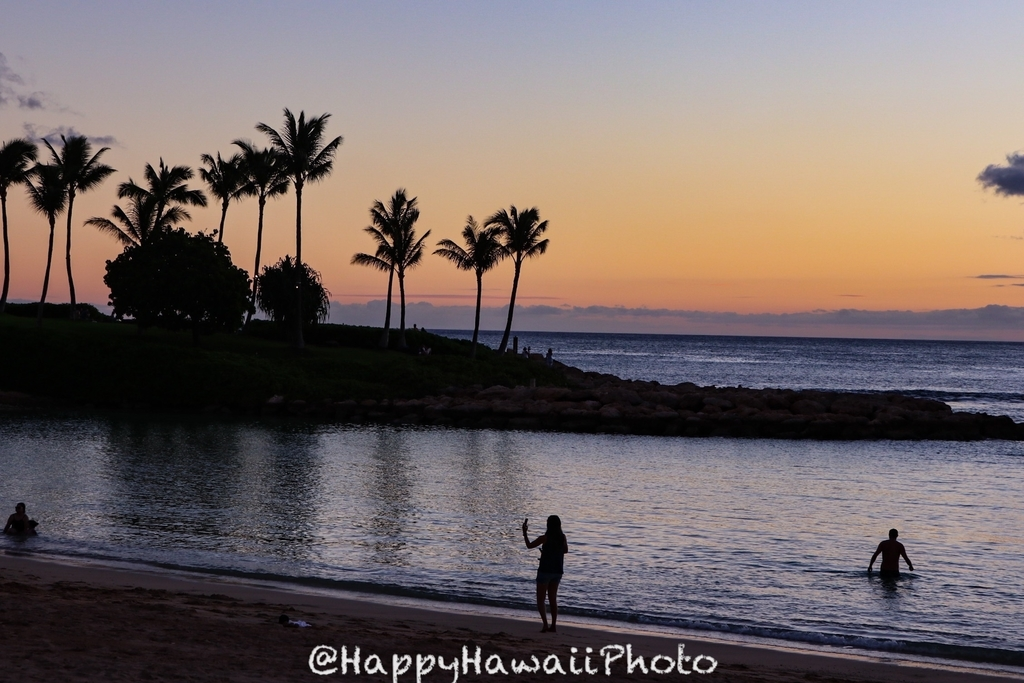 f:id:happyhawaiiphoto:20190109222319j:plain