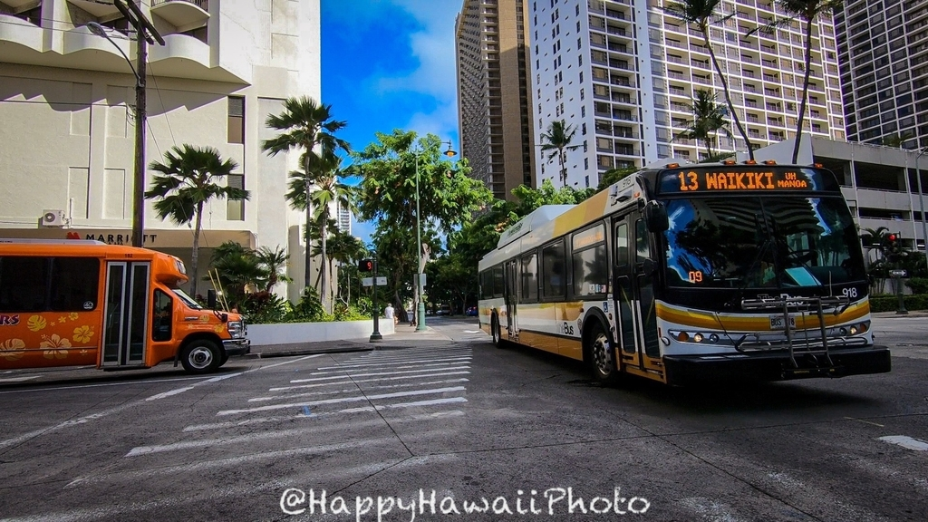 f:id:happyhawaiiphoto:20190112000849j:plain