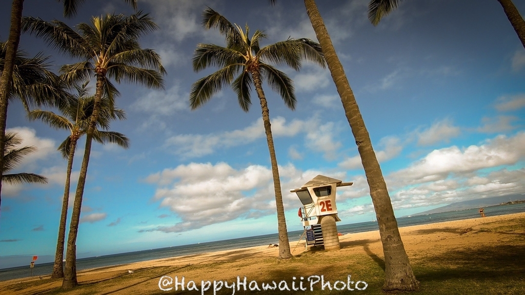 f:id:happyhawaiiphoto:20190112202711j:plain