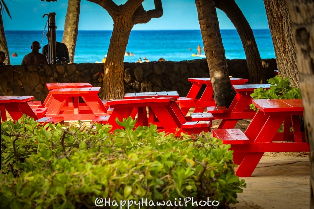 f:id:happyhawaiiphoto:20190209001951j:plain