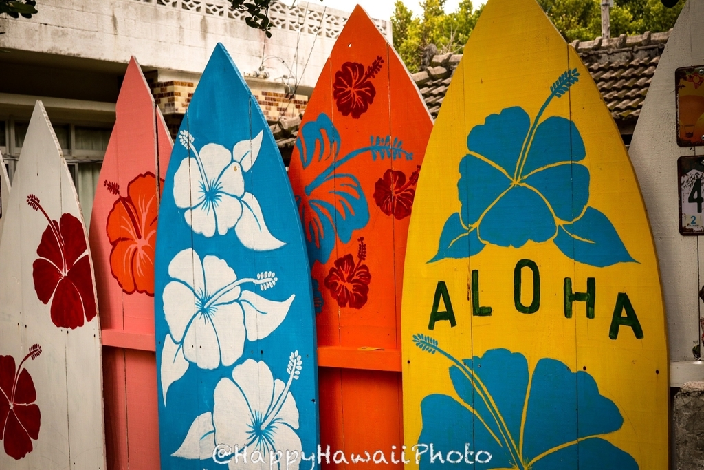 f:id:happyhawaiiphoto:20190221230045j:plain