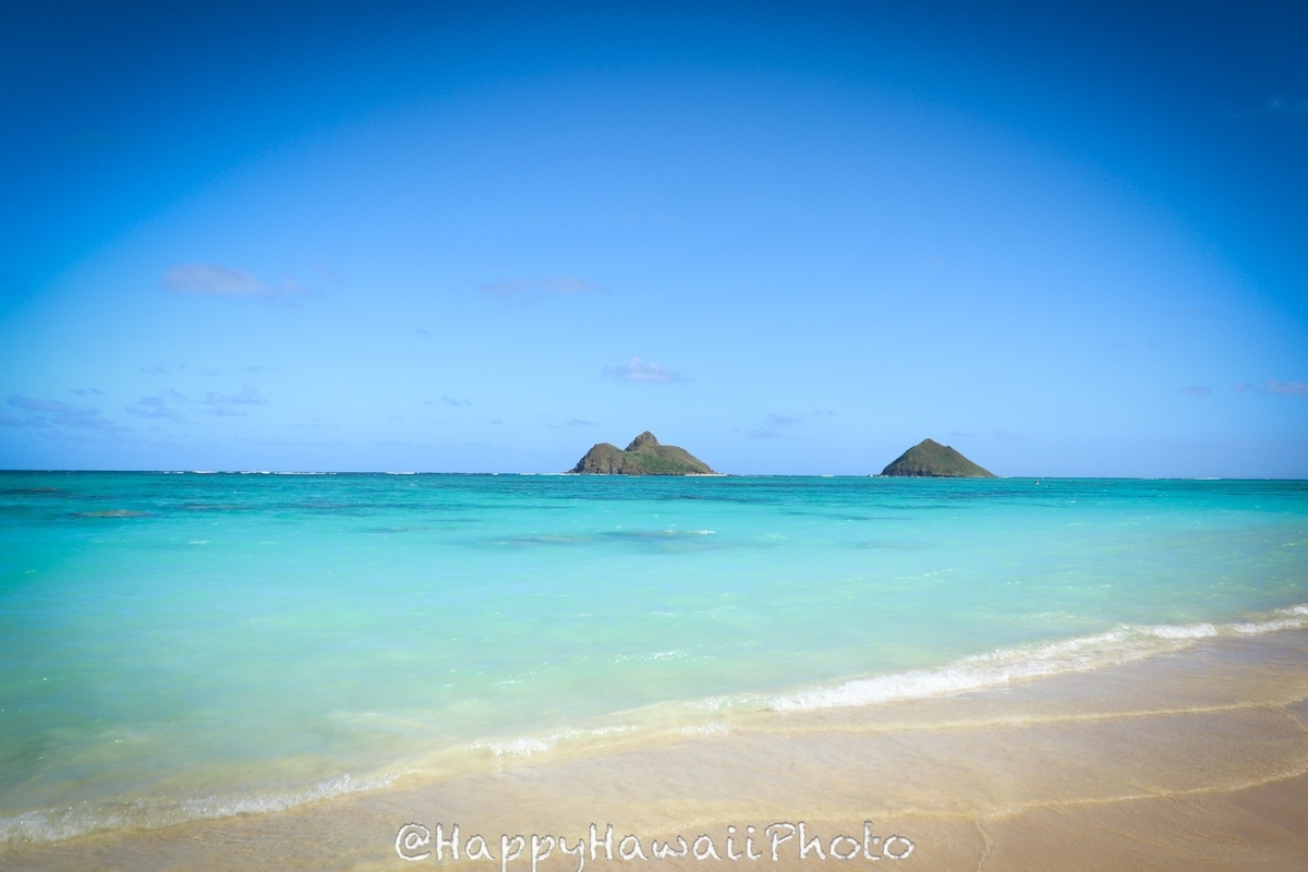 f:id:happyhawaiiphoto:20190408222155j:plain