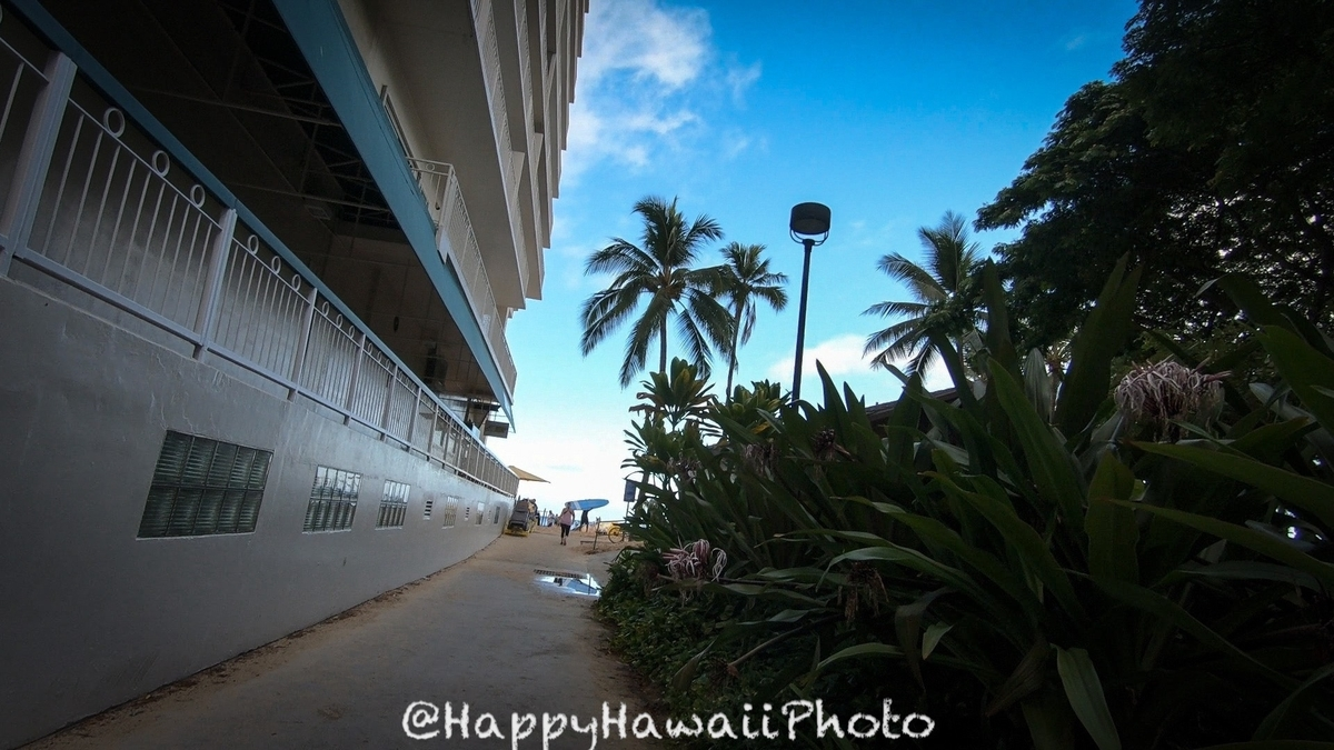 f:id:happyhawaiiphoto:20190412000256j:plain