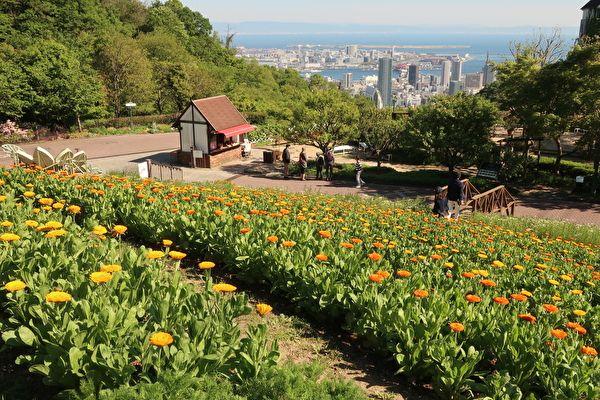 神戸布引ハーブ園 風の丘芝生広場からの景色