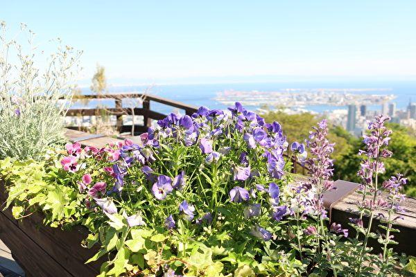 ザ・ヴェランダ神戸 テラスからの景色