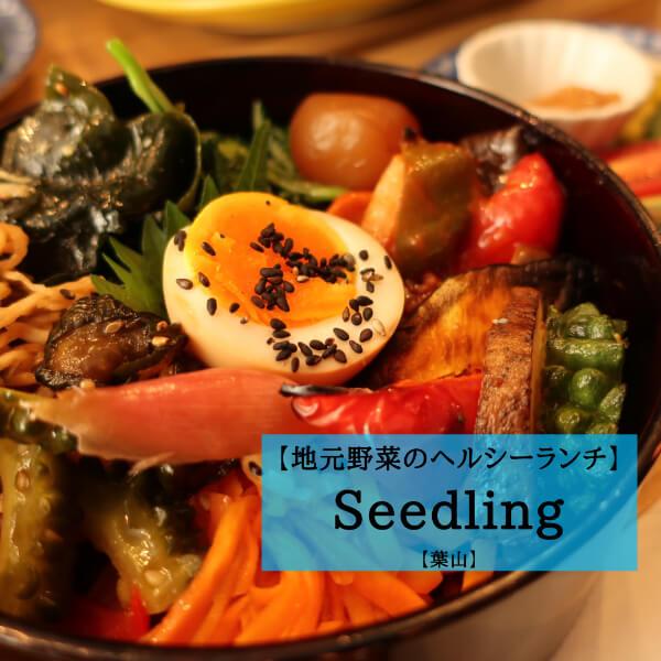 【レポ】葉山で食べるおしゃれランチは、野菜の色鮮やかな映え丼で決まり!【葉山Seedling】