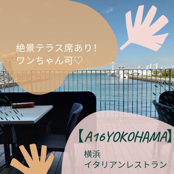 犬連れ可!絶景テラス席ありの横浜イタリアンを食べに行こう!【A16YOKOHAMA】