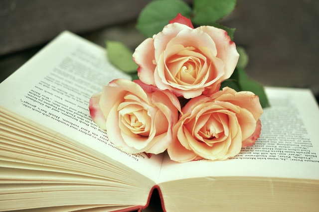 3輪のバラが聖書の上に乗っている