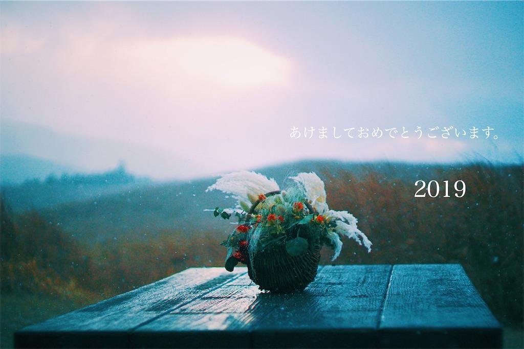 f:id:happyokapi:20190106110008j:image