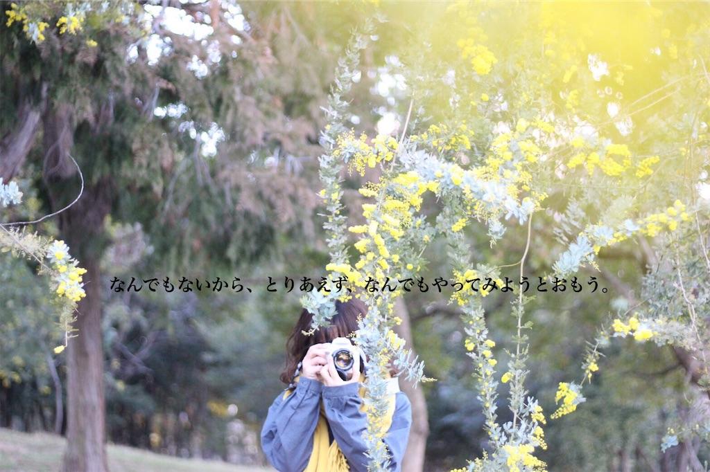 f:id:happyokapi:20190403120326j:image