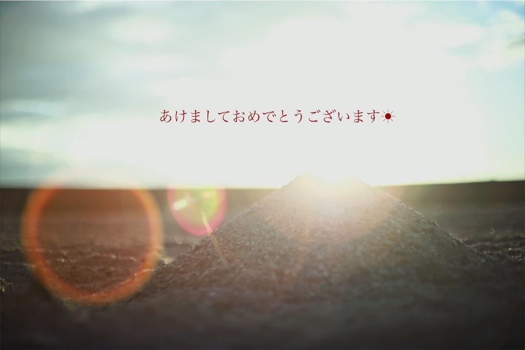 f:id:happyokapi:20210101225344j:image