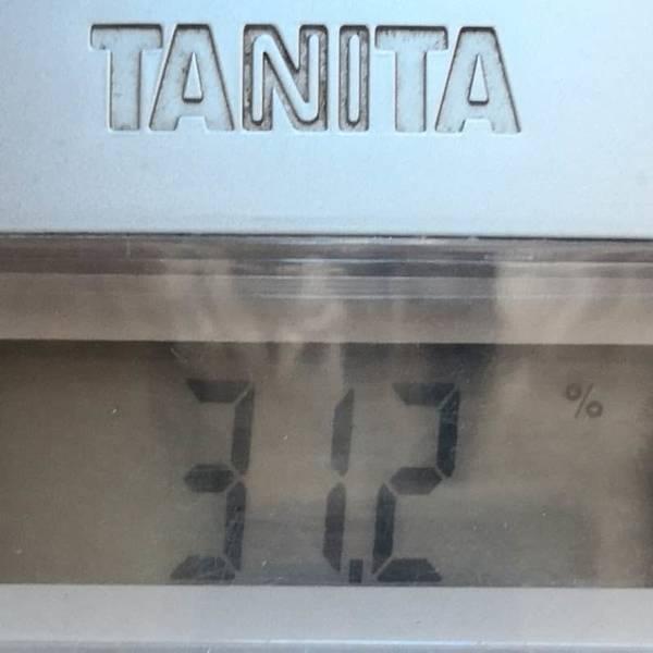 体脂肪31.2