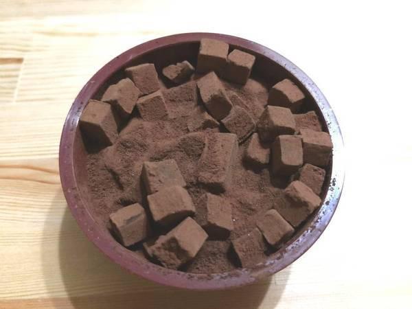 蓋を開けたところ生チョコアイス