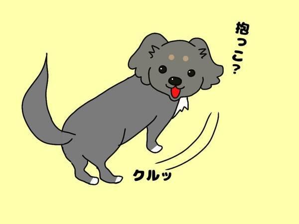 小型犬の抱っこ
