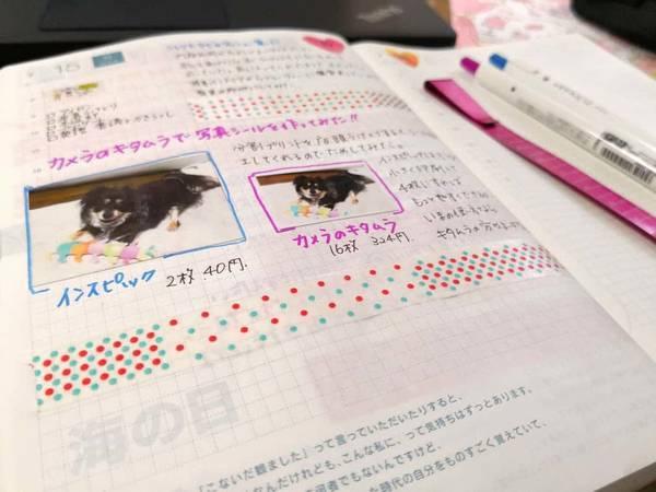 カメラのキタムラで作った写真シールをほぼ日手帳に貼る