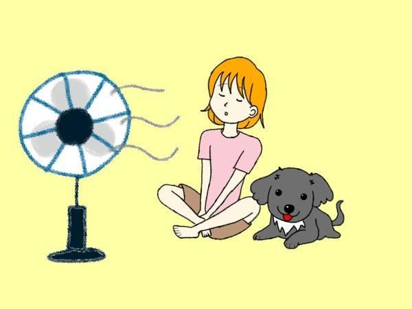 我が家の熱中症対策