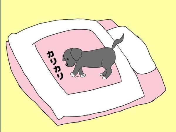 布団をカリカリする犬のイラスト