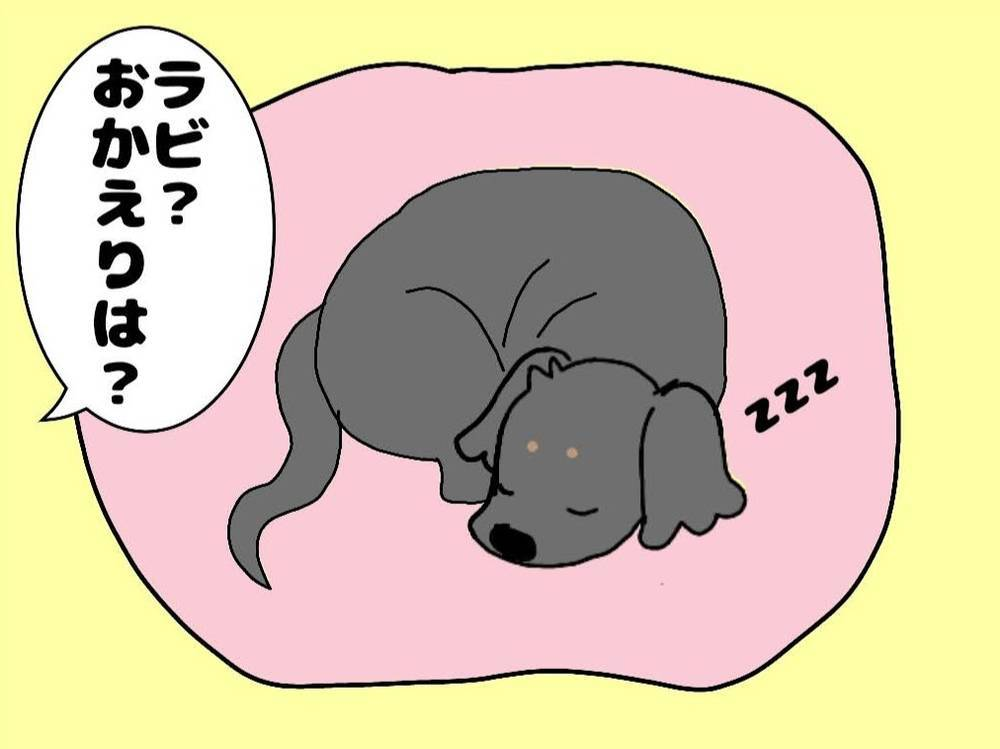 ラビが寝ているイラスト