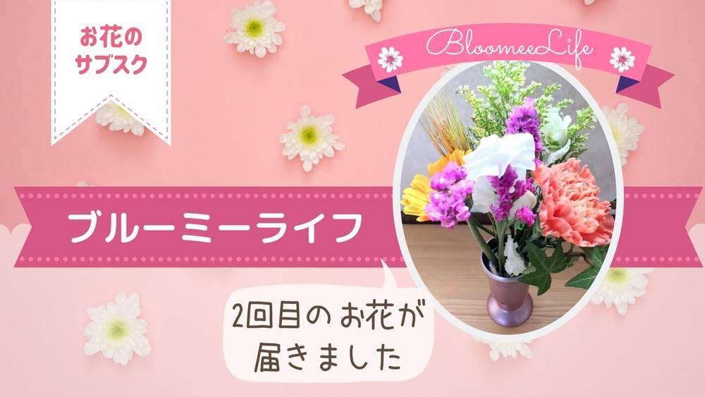 ブルーミーライフ2回目のお花が届きました