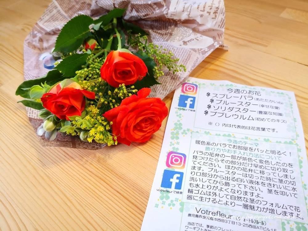 ブルーミーライフの花