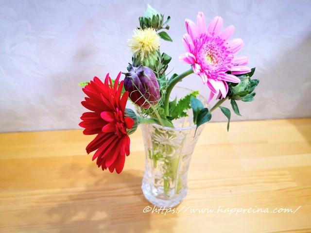 ブルーミーライフで届いたお花ニゲラの実