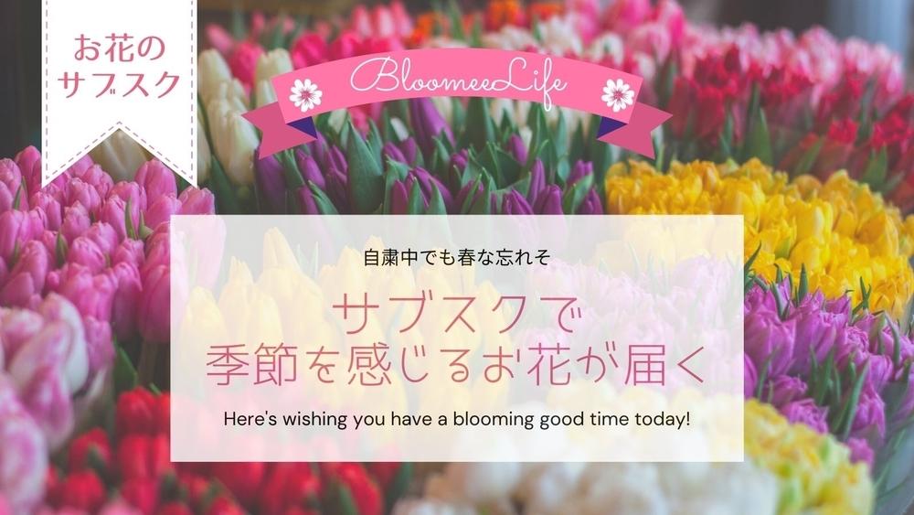 ブルーミーライフでお花のサブスク